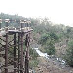 nairobi safari walk -view of the national park