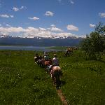 Daily Horseback Rides in the mountains around the ranch