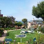 Rebecca's Gardens