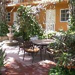 The outdoor garden