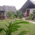 Photo de The Lazy Moon Homestay, B&B
