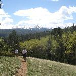 Mueller State Park hike