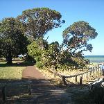 Whalers Cove path to beach