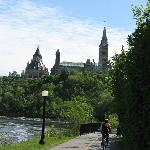 biking towards Parliament
