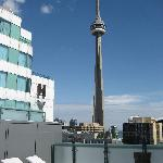 CN Tower view from Roof Top Pool