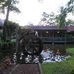 The small pond/lake out front of Dye's
