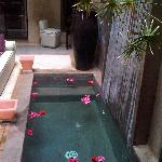 PRETTY PLUNGE POOL & LOUNGE