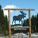 Big Moose, big sign