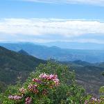 The White Mountains in AZ