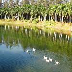 Nani Daman Lake