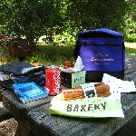 Picnic in a State Park