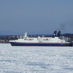 Newfounland Ferry stuck in ice in Sydney Harbour.