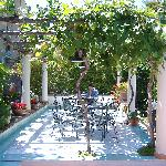 vine covered sitting area