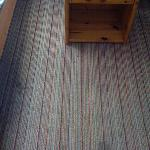 stainy carpet
