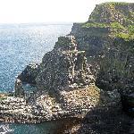 Rathlin Island bird rookery (20 min. ferry ride)