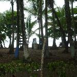 The town of Dominical just 5 min. away