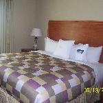 Homewood Suites by Hilton Irving - DFW Airport Foto