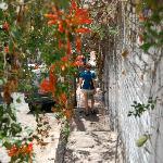 Walking through Gringo Gulch