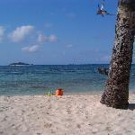 Playas al frente del hotel