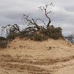 Mungo National Park 2