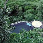 firefly pool