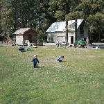 The kids loved the garden, sheds and ducks