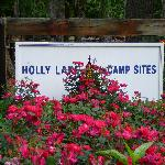 Holly Lake Campsite Sign near Petting Zoo