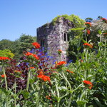 Tower in walled garden