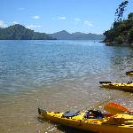 Kayaking from Picton