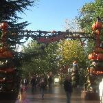 Disney Halloween 4