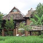 Villas overlooking rice fields