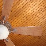 Dust build up on the fans