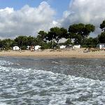 Photo of Las Palmeras Camping