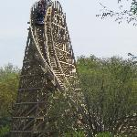 That first drop on Prowler. GCI woodies are so cool!