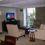 """Suite View """"Living Area"""""""