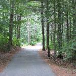 The drive up to Lambert's Cove