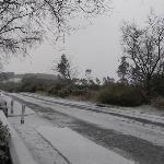 Snow at Pinewood