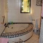 zebra suite bathroom