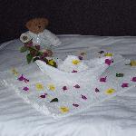 granson bed