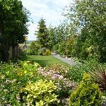 Hop Pole garden