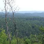 View from near Tater Knob Tower