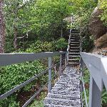 One of the DOZENS of staircases leading to Tater Knob Tower