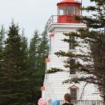 Kids at Cape Bear Lighthouse 5 minutes from Cottage and Stream