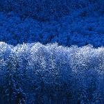 Hannagan Meadow trip