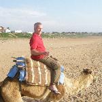 le tour de chameau sur la plage
