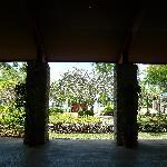 廊下から見たガーデン
