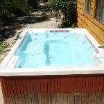 Cabin 4 pool