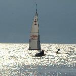 Lake Neuchatel
