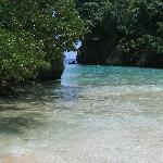 Frencman's Cove Beach