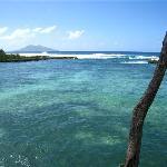 Snorkelling Spot
